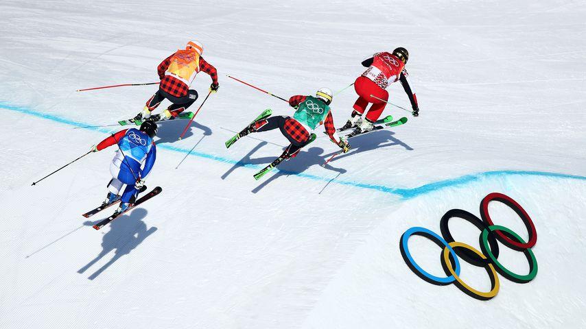 Kevin Drury, Dave Duncan, Arnaud Bovolenta und Sergey Ridzik bei den Olympischen Winterspielen