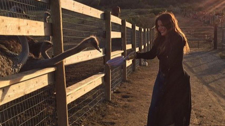 Happy! Khloe Kardashian hat keinen Liebes-Kummer