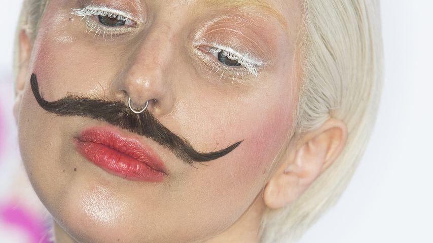 Trauer bei Lady GaGa! Hündchen Alice (✝19) ist tot