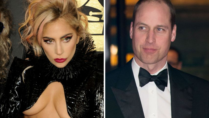 Lady Gaga & Prinz William skypen: Chat-Date aus gutem Grund!