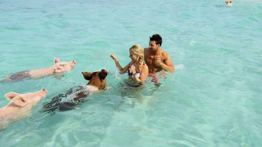 Bachelor-Traumdate: Leonard & Leonie beim Schweine-Schwimmen