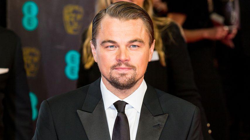 Stehvermögen: Schlief Leo DiCaprio mit 20 Frauen?