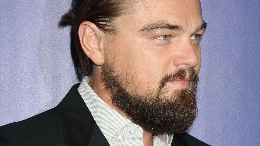Leonardo DiCaprio auf dem Red Carpet