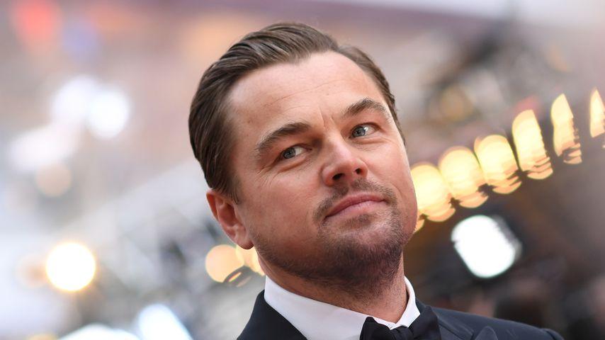 Leonardo DiCaprio investiert diese Megasumme in Umweltschutz
