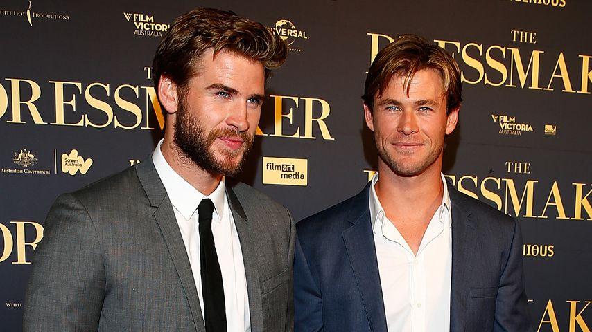 Liam und Chris Hemsworth auf einer Premiere im Oktober 2015 in Melbourne
