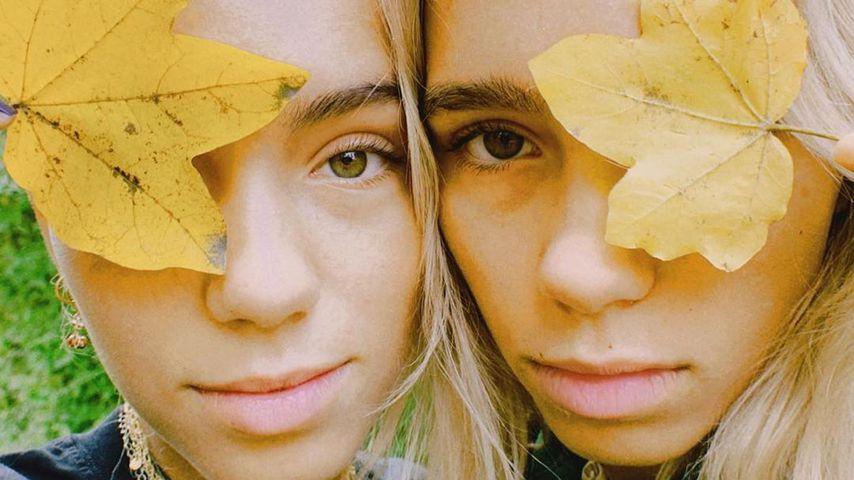Lisa und Lena, Influencerinnen