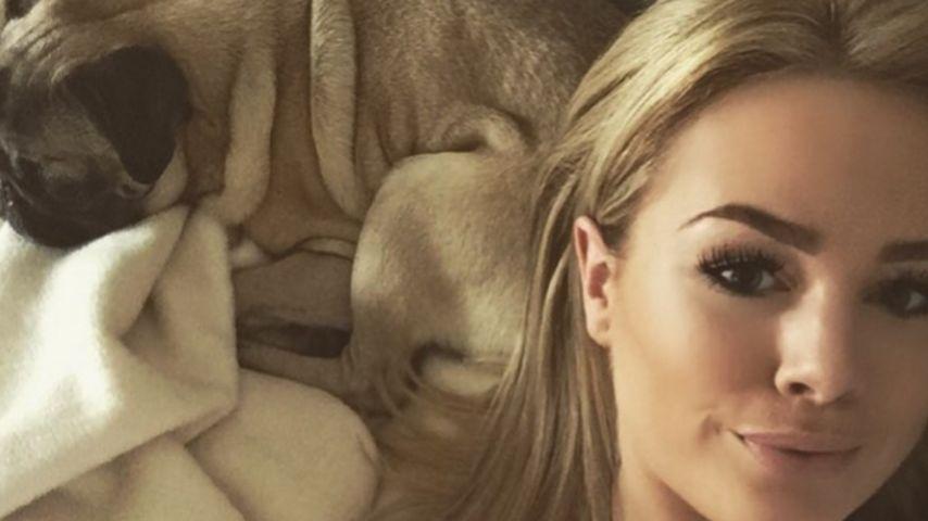 Liz Kaeber völlig verzweifelt: Ihr Hund hat einen Tumor!