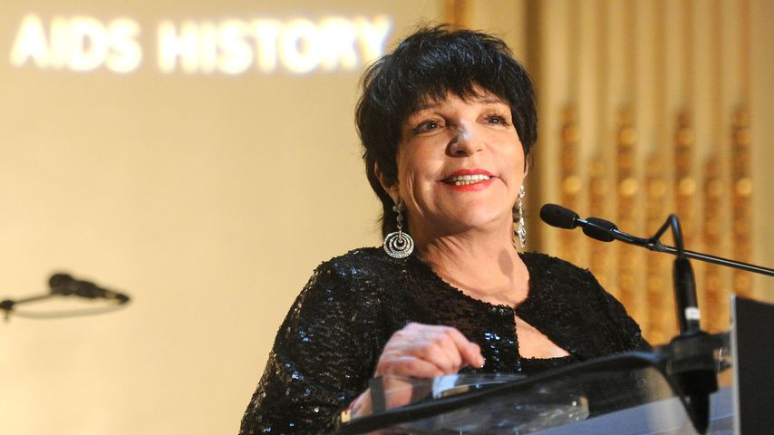 Liza Minnelli bei der amfAR Gala 2013 in New York