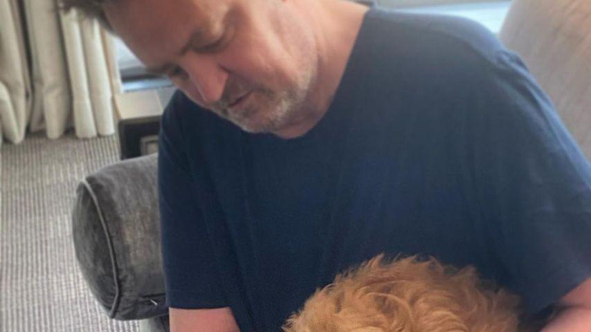 Matthew Perry mit seinem Hund