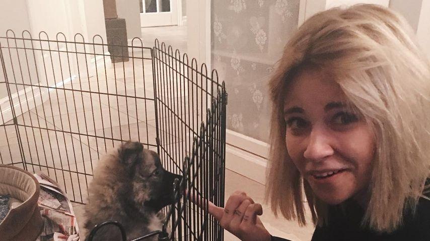 Melina Sophie mit dem irländischen Schäferhund Goði