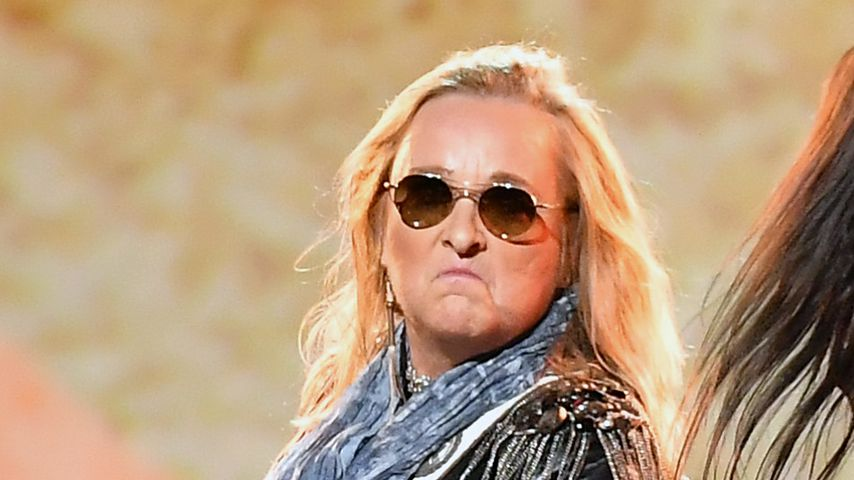 Melissa Etheridge, Sängerin