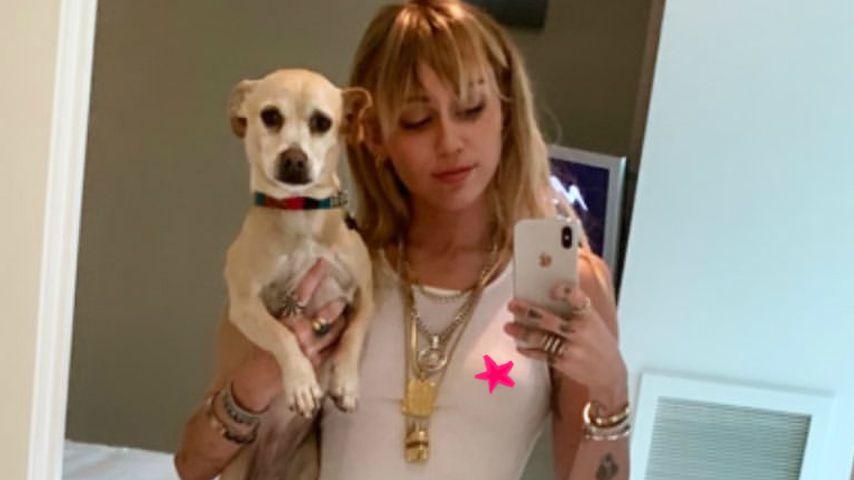 Collage: Miley Cyrus, Sängerin