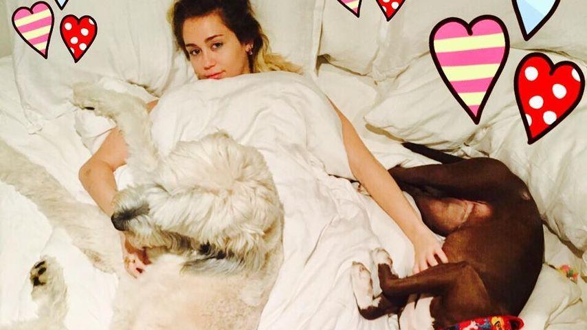 Miley Cyrus, Sängerin und Schauspierlein