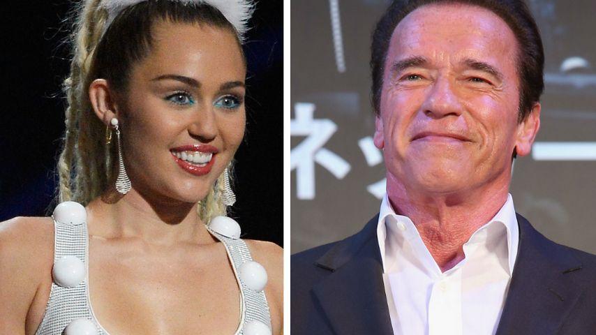 Miley Cyrus & Dad vom Ex: Selfie mit Arnie Schwarzenegger!