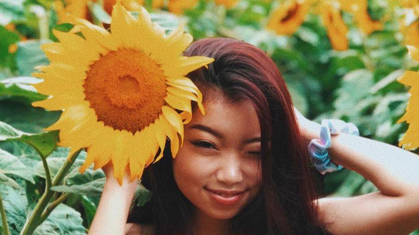 Polizeichaos wegen Instagram: User belagern Sonnenblumenfeld