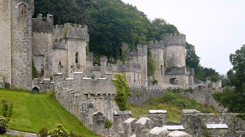 Gwrych Castle, Location des UK-Dschungelcamps