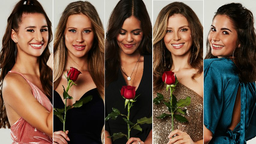 Top 5: Welche Bachelor-Lady bekommt Sebastians letzte Rose?