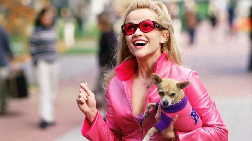 """Reese Witherspsoon in """"Natürlich blond"""""""