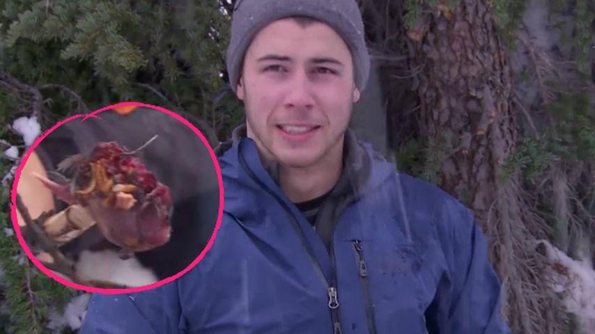 Aufgetaut & geköpft: Nick Jonas futtert Vogel in der Wildnis