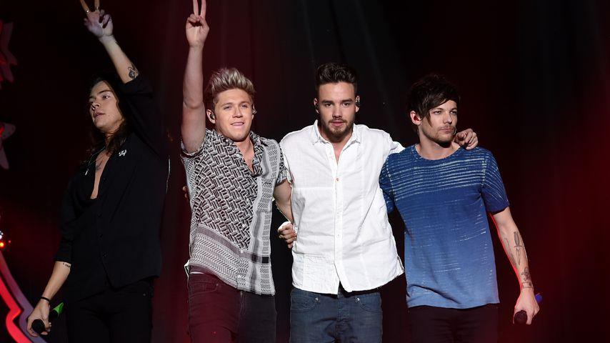 One Direction im Dezember 2015