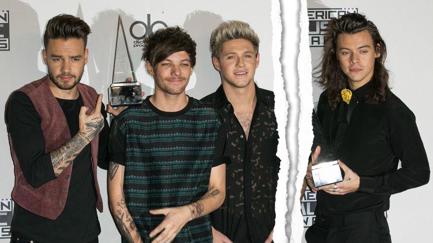 Ist 1D Geschichte? Harry Styles gibt sein Band-Aus bekannt