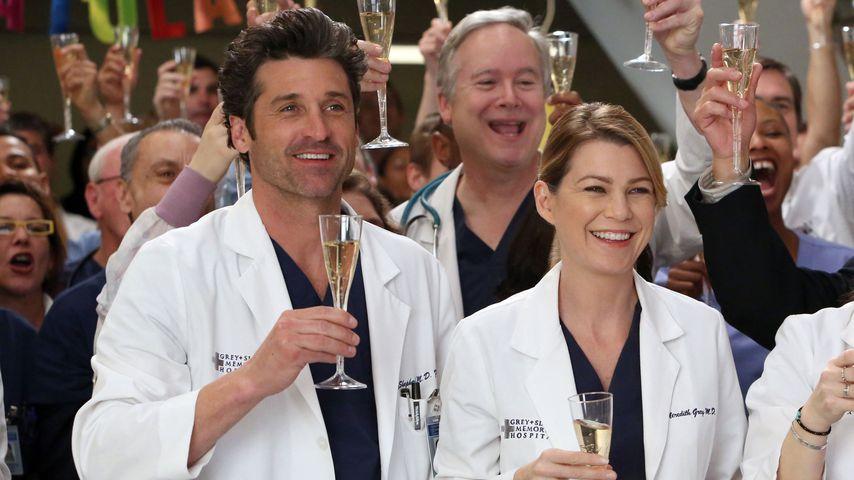 """Millionen! So viel Kohle scheffelt der """"Grey's Anatomy""""-Cast"""