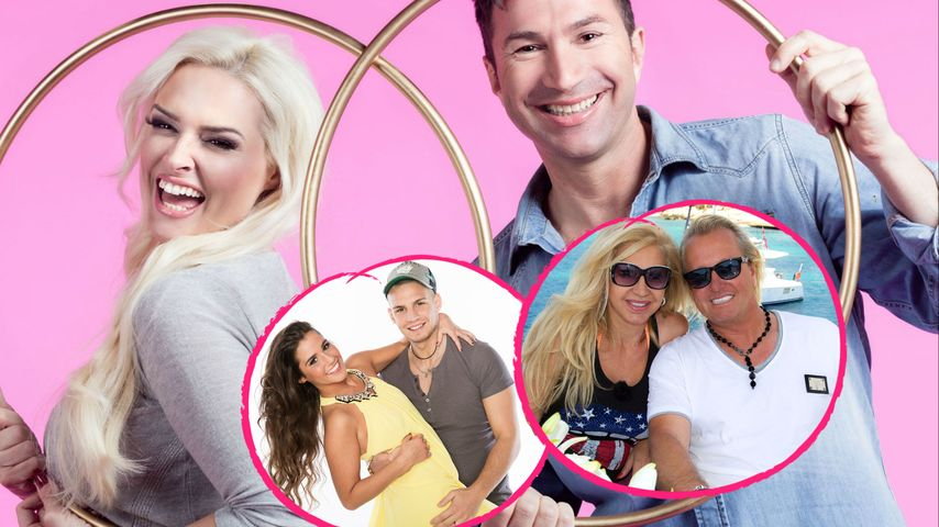 Geissens, Katze, Lombardis: Welche RTL II-Show ist Nummer 1?