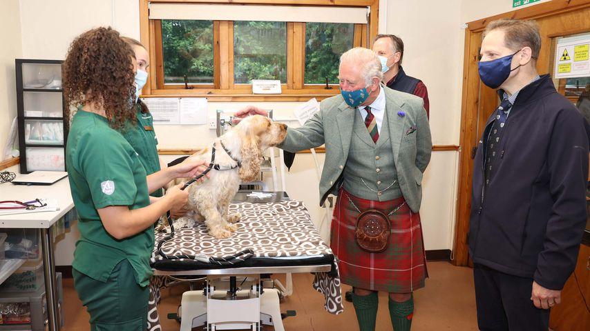 Prinz Charles im Juli 2021 in einer schottischen Tierklinik