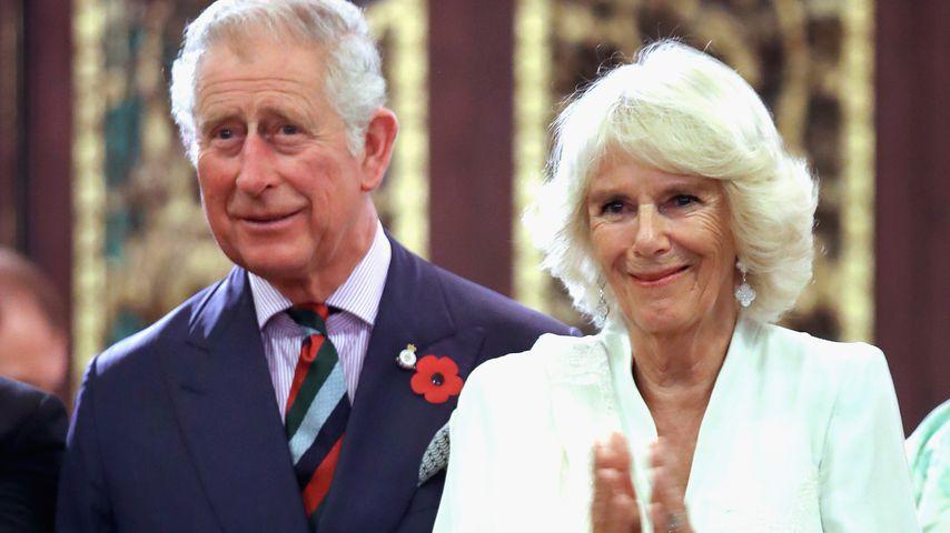 Royale Verlobung: Auch Charles & Camilla freuen sich!