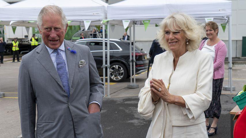 Prinz Charles und Herzogin Camilla im Jahr 2020