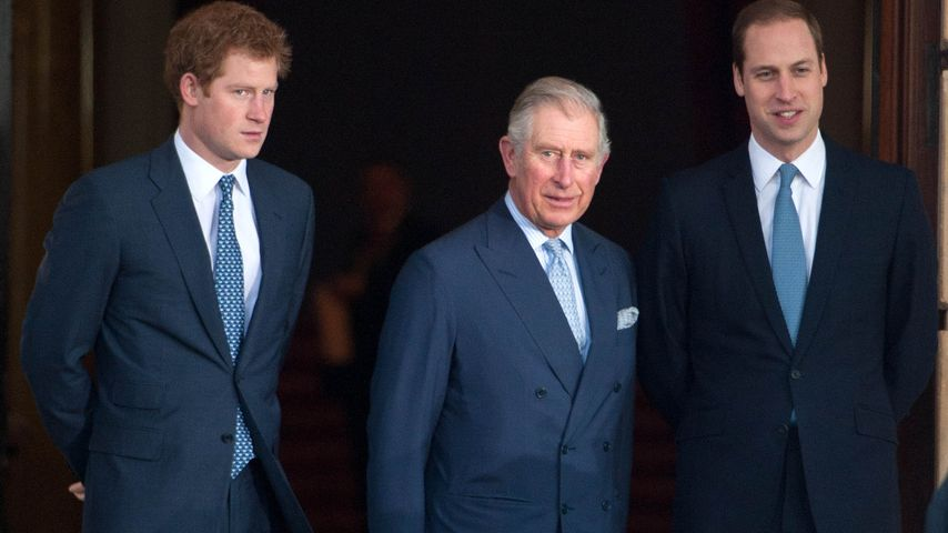 Prinz Harry, Prinz Charles und Prinz William