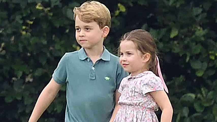 William verrät: Rivalität zwischen George und Charlotte?