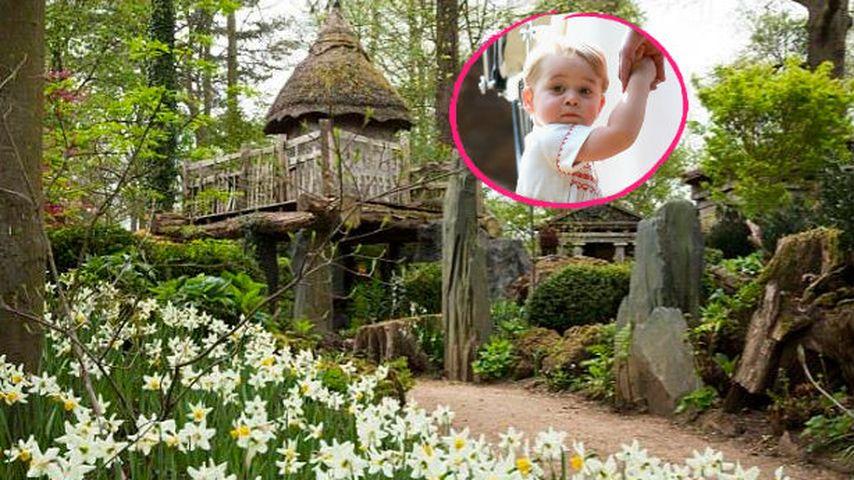 Putzig! Prinz George (2) erbt das Baumhaus seines Vaters