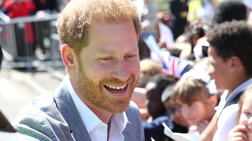 Wie süß: Prinz Harry bekommt Erziehungs-Tipps von Kindern!