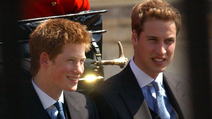 Prinz Harry und Prinz William im Juni 2003