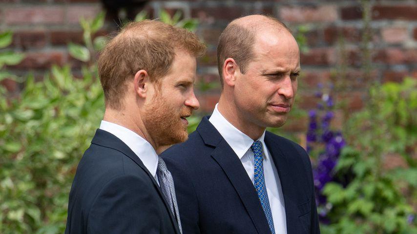 Prinz Harry und Prinz William im Juli 2021