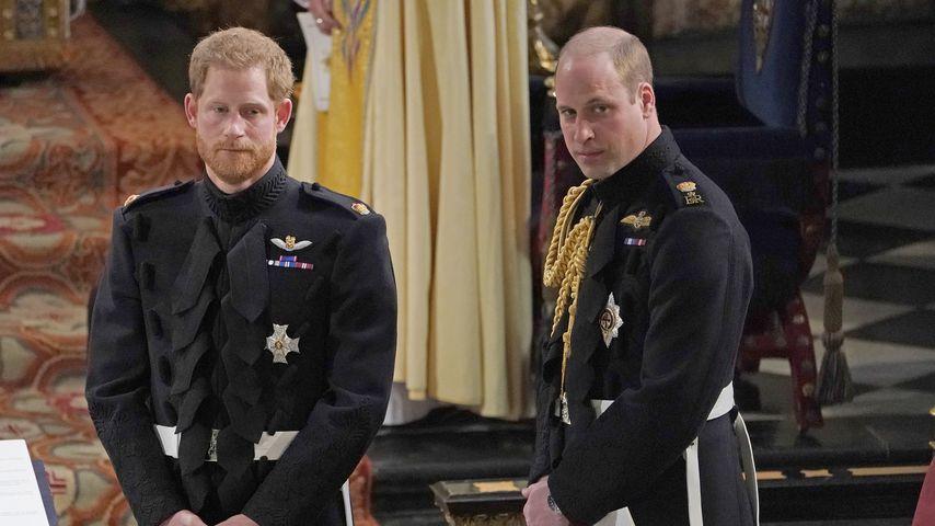 Wegen Megxit: William wollte sich nicht mit Harry treffen