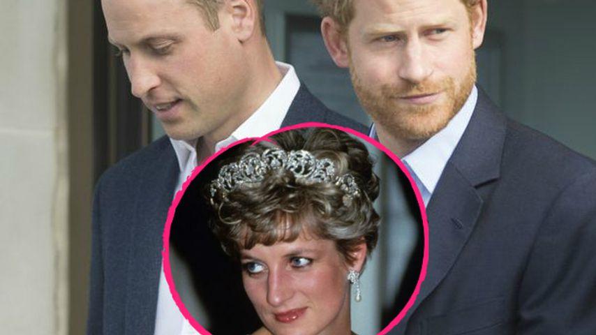 Aus Liebe: William & Harry bauen Denkmal für Lady Diana (✝)