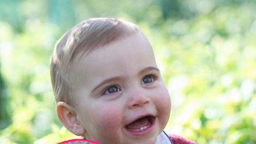 Süßes Klatsch-Video: So groß ist Prinz Louis (1) schon!