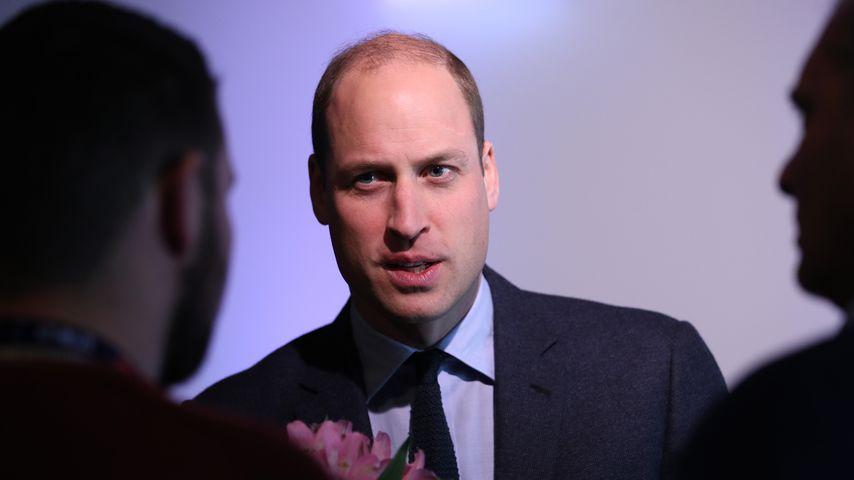 Prinz William bei einem Charity Event