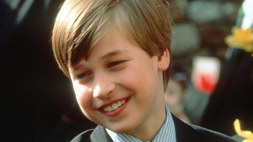 Prinz William im Jahr 1991