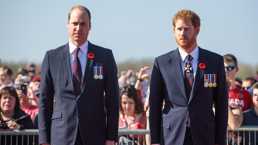 Prinz William und Prinz Harry beim Canadian National Vimy Memorial