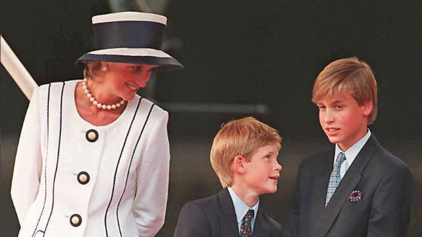 Prinzessin Diana, Prinz Harry und Prinz William