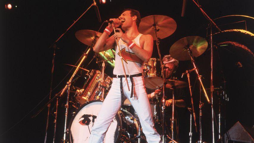 75. Geburtstag: Queen-Kollegen gedenken Freddie Mercurys (†)