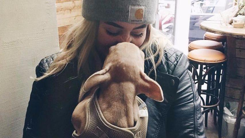 Dagi Bees Managerin Ramona Mour mit ihrem Hund Kenzo