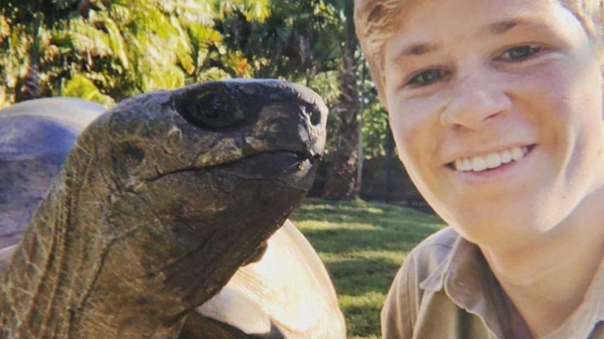 Mutig wie Papa Steve! Robert Irwin stellt Krokodil-Foto nach
