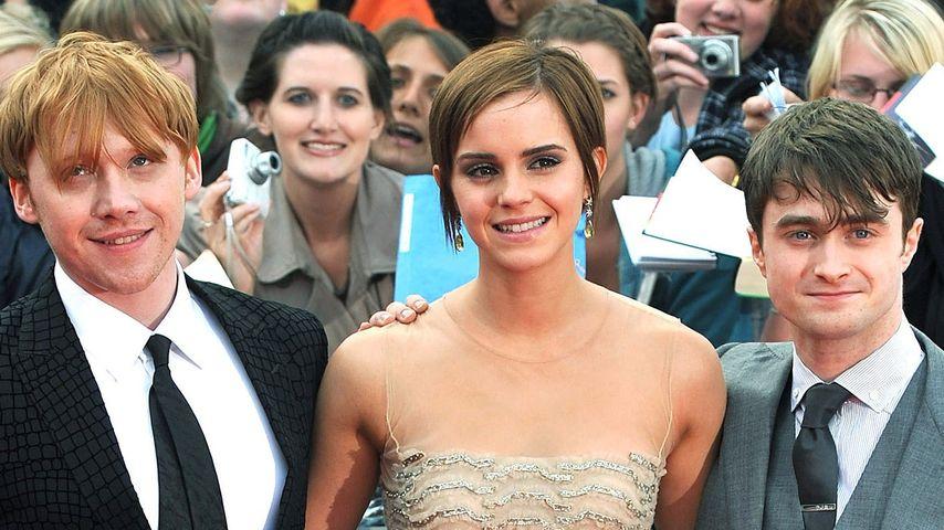 Rupert Grint, Emma Watson und Daniel Radcliffe (v.r)