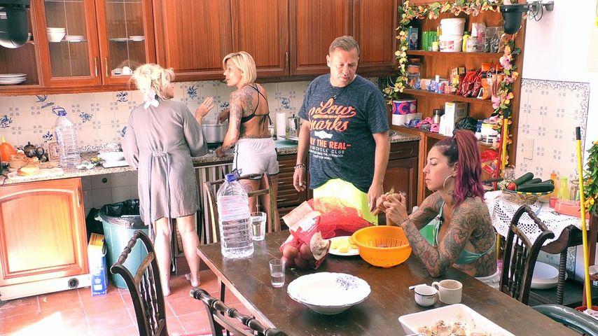 Sabrina, Jasmin, Willi und Kate in der Sommerhaus-Küche