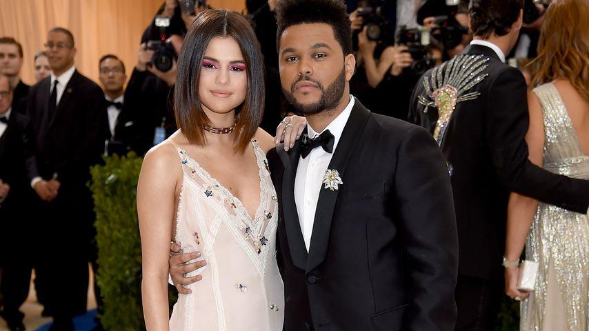 Will er sie vergessen? The Weeknd löscht alle Selena-Fotos