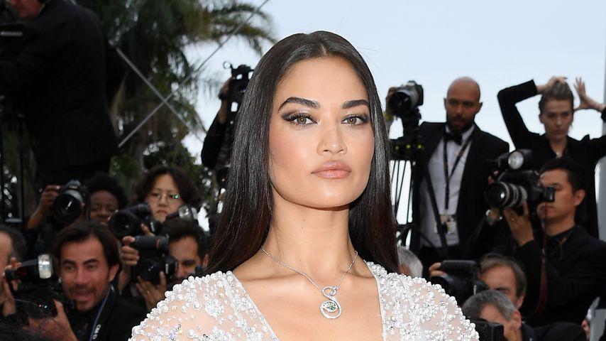 Shanina Shaik, Model